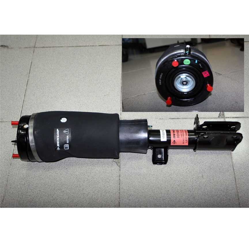 SHOCK FRONT (AIR SUSPENSION) FL - L33 02-06 - TwinCell